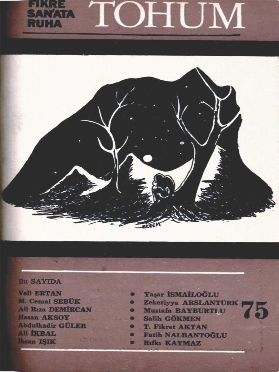 7. Cilt 75. Sayı