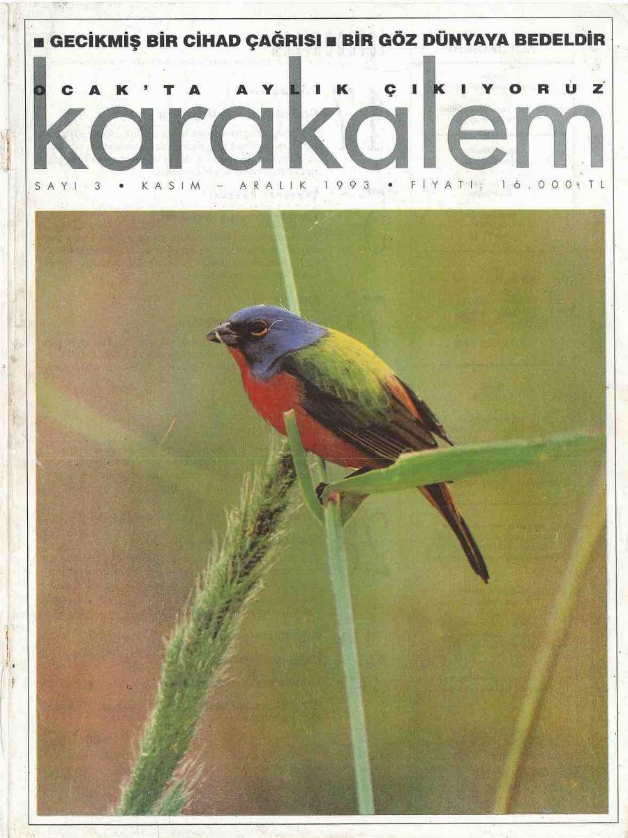 1993. Cilt 3. Sayı